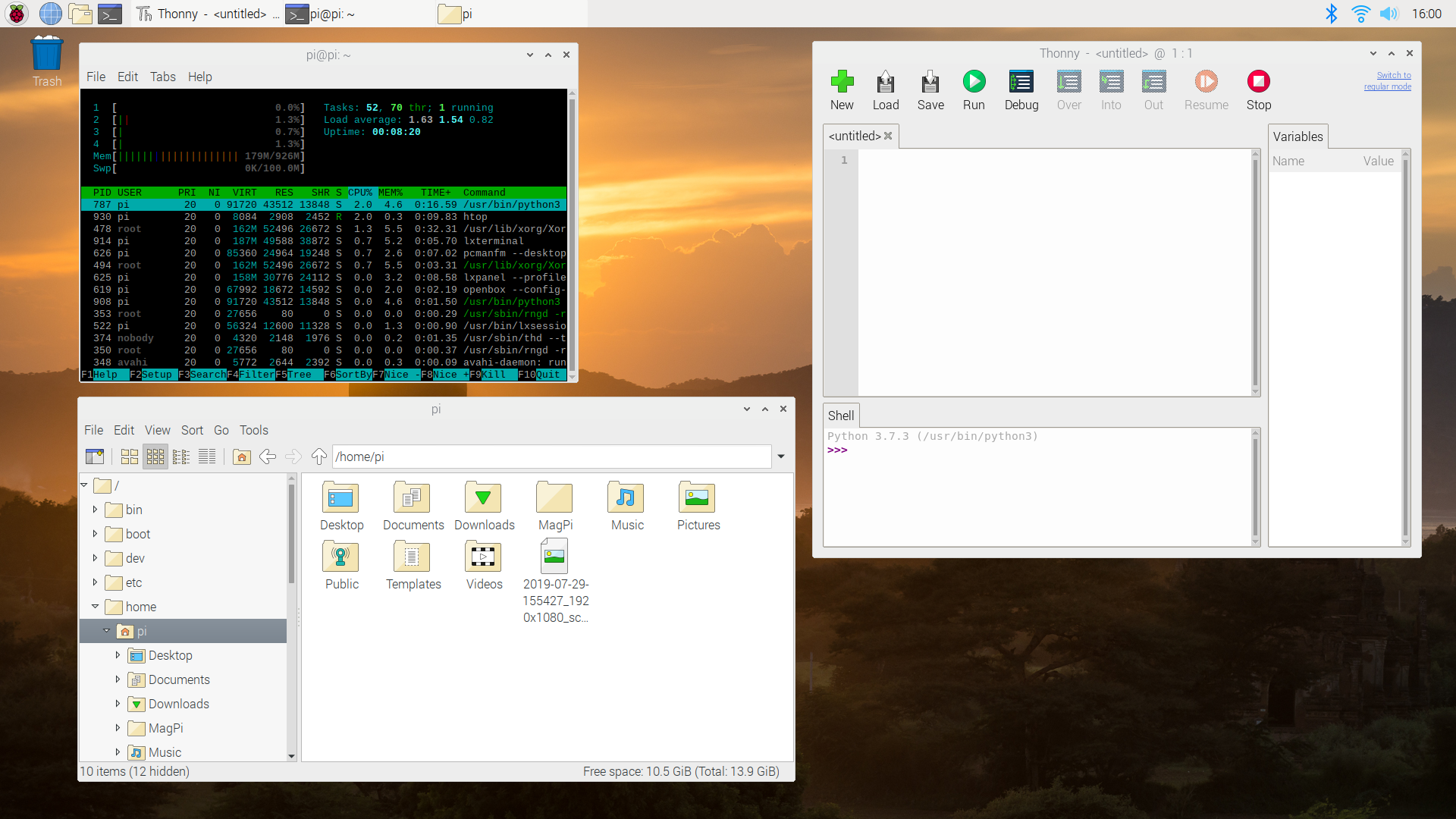 Screenshot of Raspbian OS